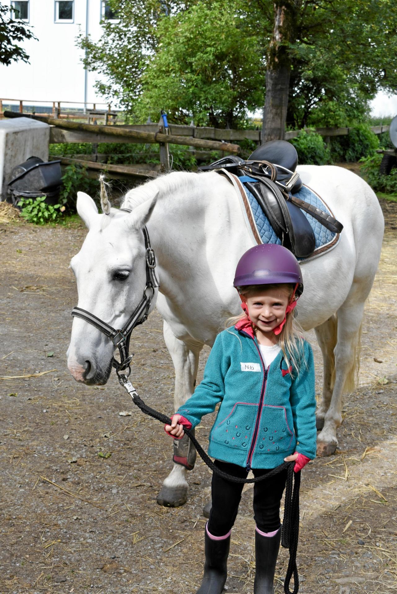 Ponyreiterinnen überzeugen bei Prüfungen