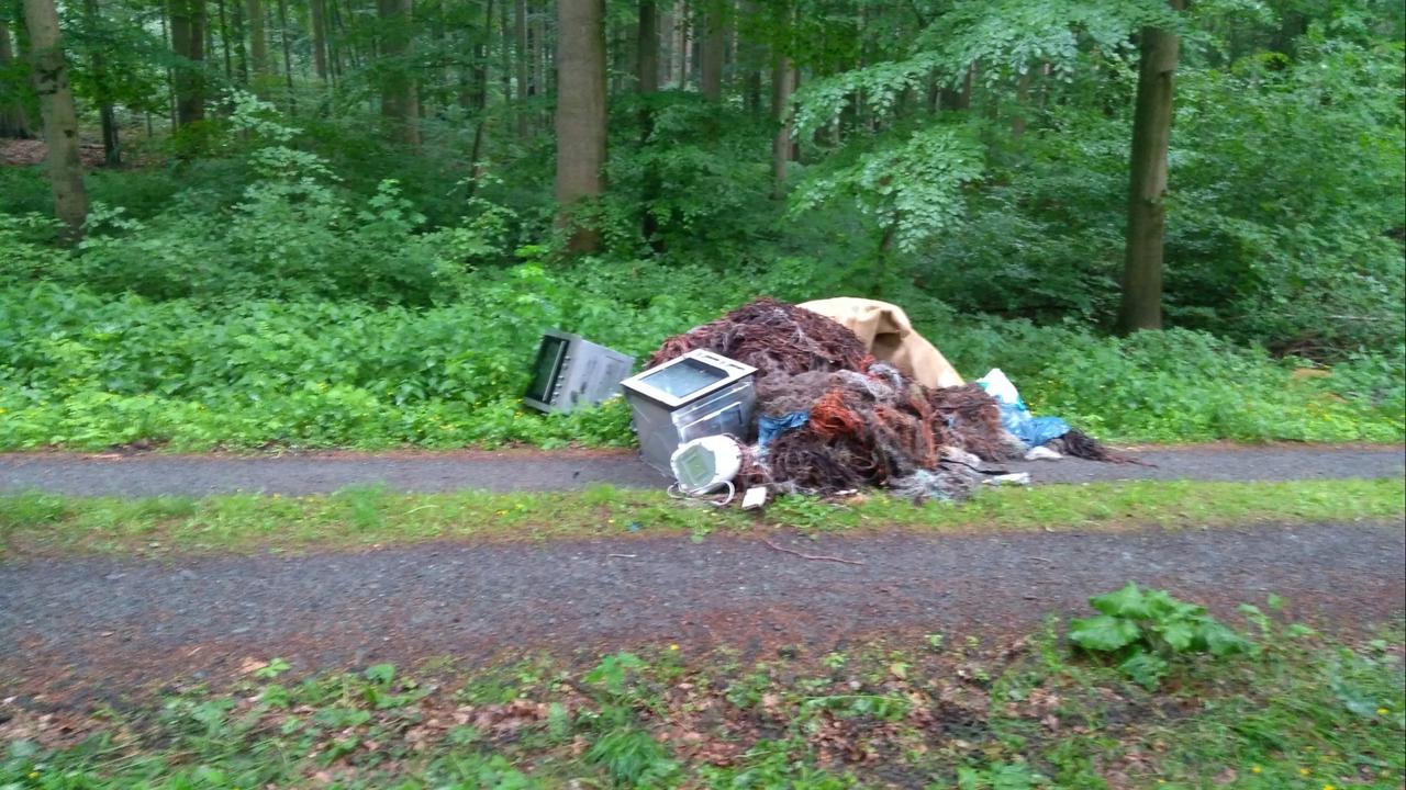 Müll einfach im Wald entsorgt