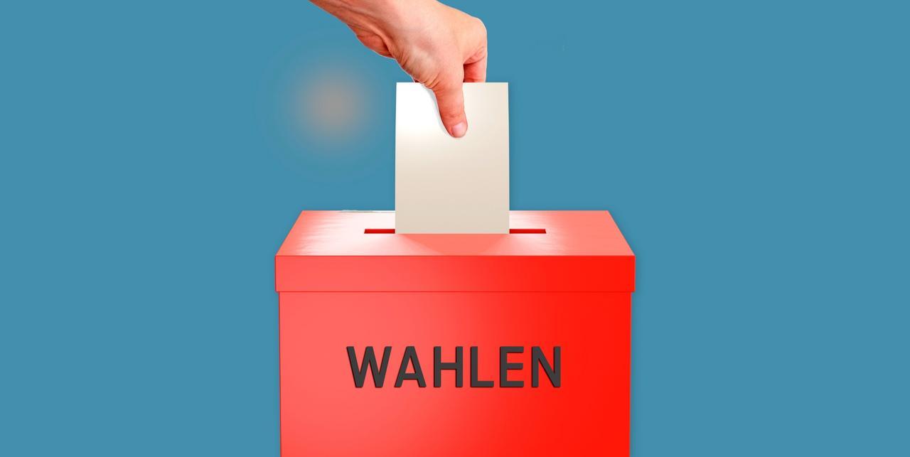 Die FDP kürt, die Menges verzichten