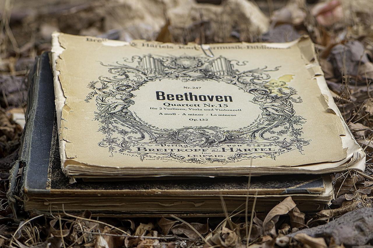Beethoven und seine revolutionären Werke