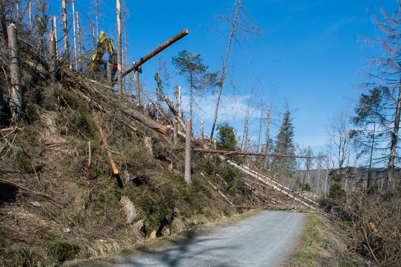 Gefährliche Arbeit in steilem Gelände