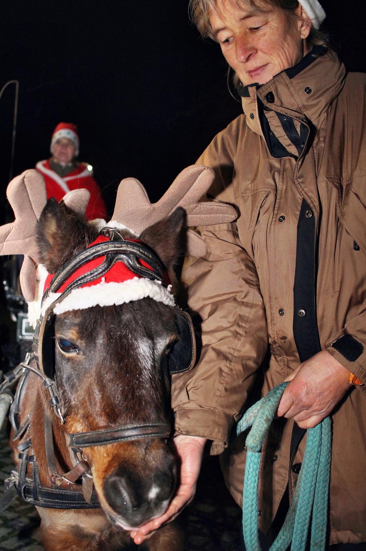 Rentier-Pony chauffiert den Weihnachtsmann