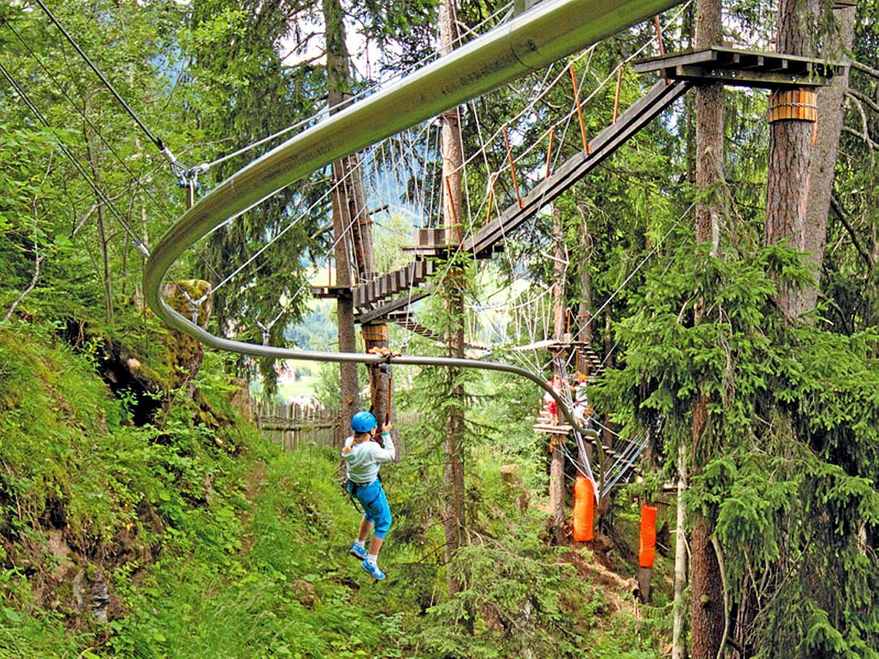 Bau der Baumschwebebahn startet
