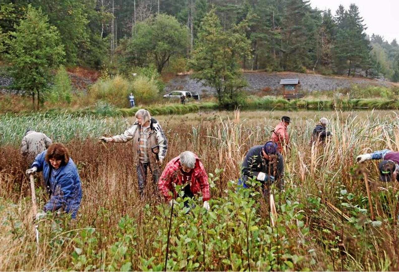 Natur Und Umwelthilfe Feiert 30 Geburtstag Goslar Gz Live