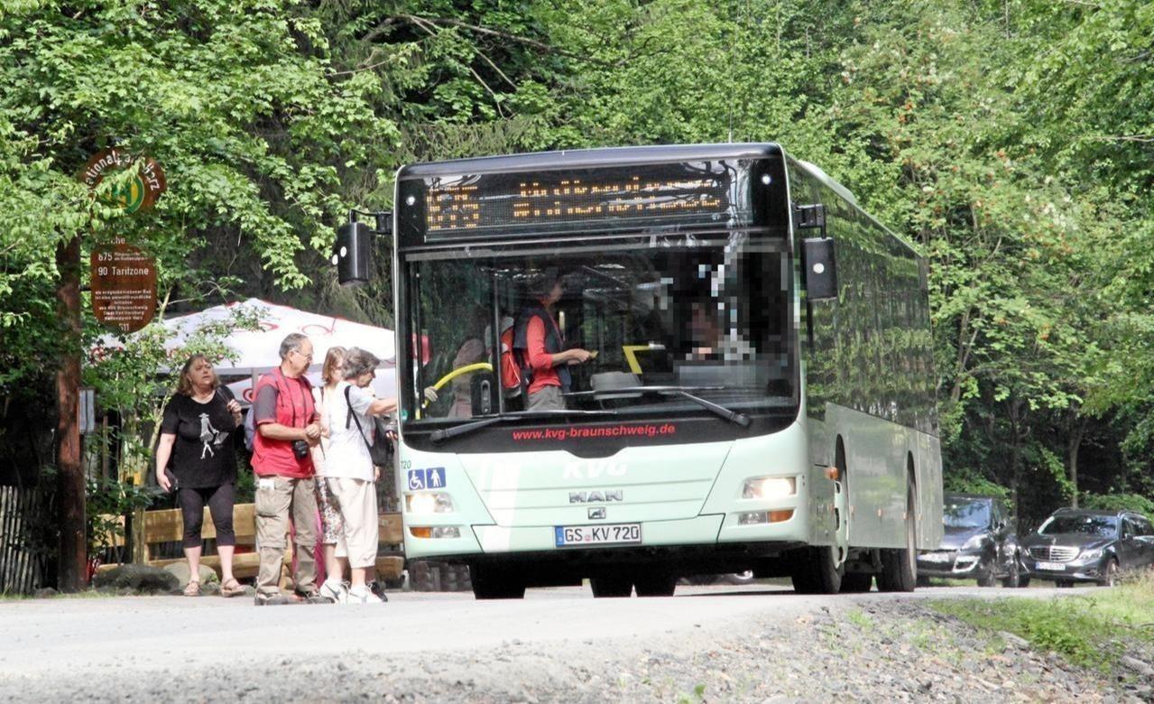 Waldbuslinie geht an den Start