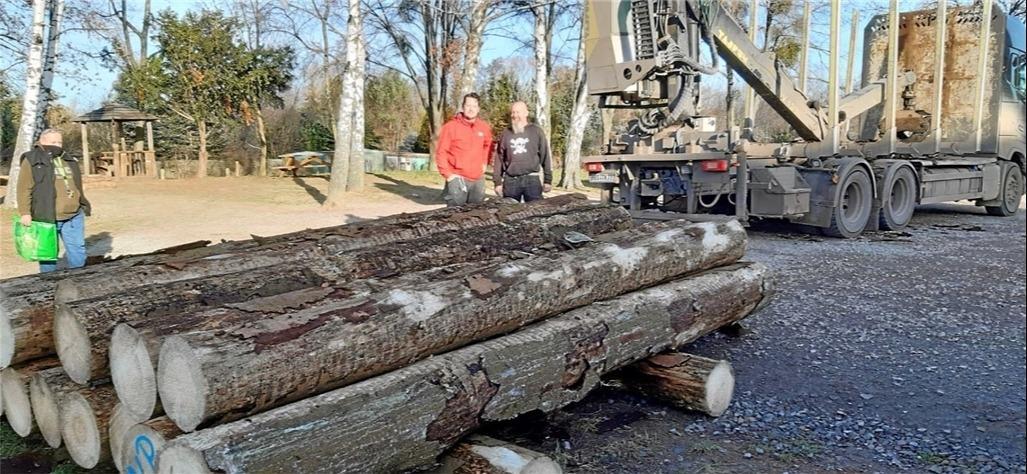 Holz für einen neuen Spielplatz
