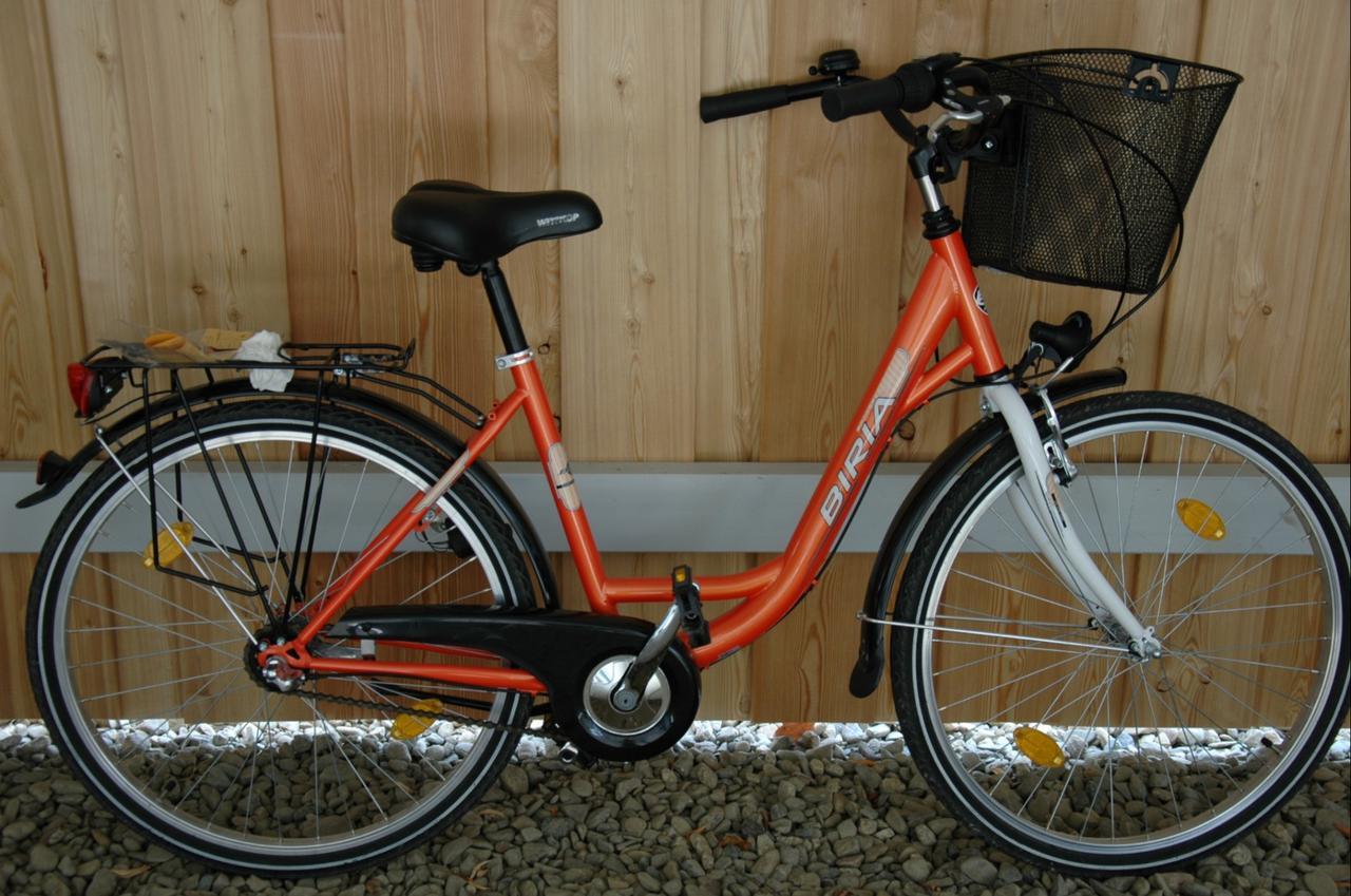 Besitzer von Mifa-Fahrrad gesucht