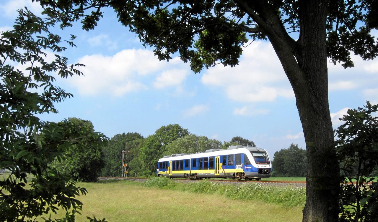 Störung von Vienenburg nach Wolfenbüttel
