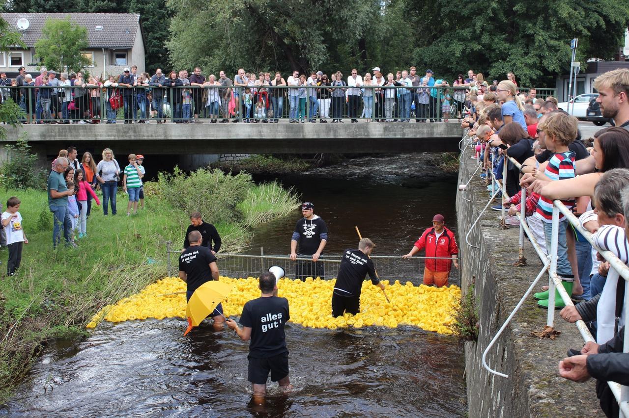 Die Wasserschlacht vom Vienenburger See