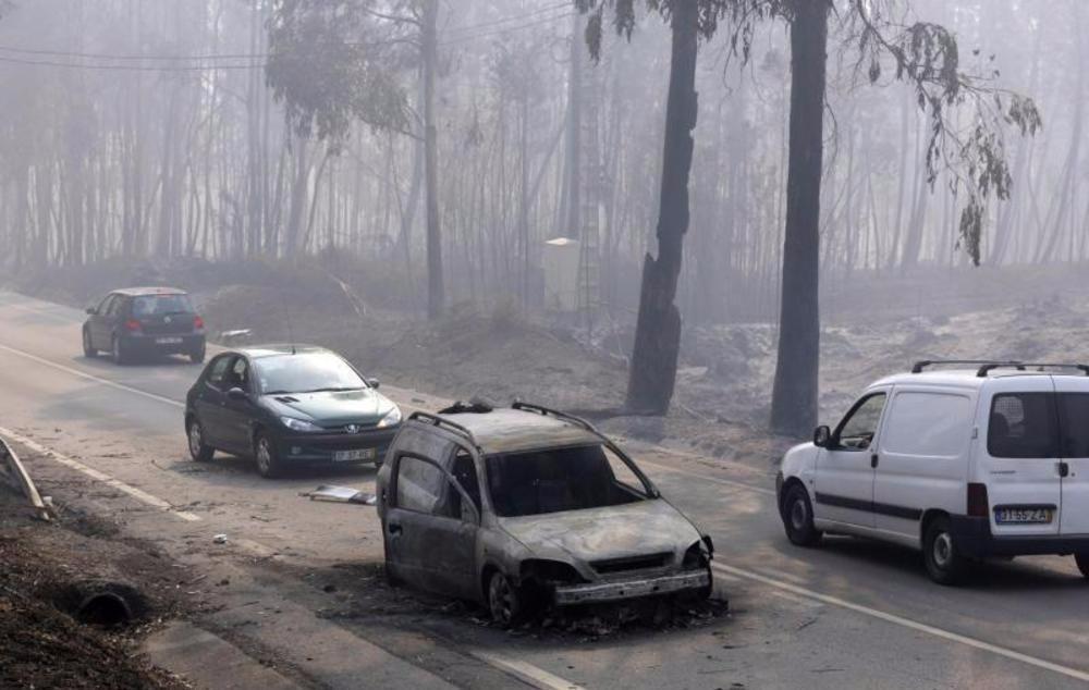 Waldbrand fordert viele Todesopfer