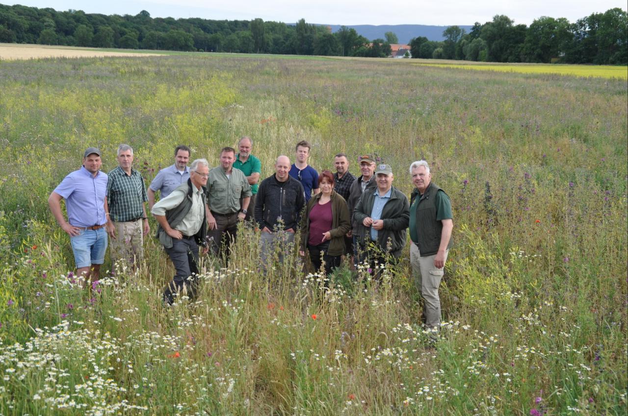Blühstreifen und Greeningflächen besichtigt