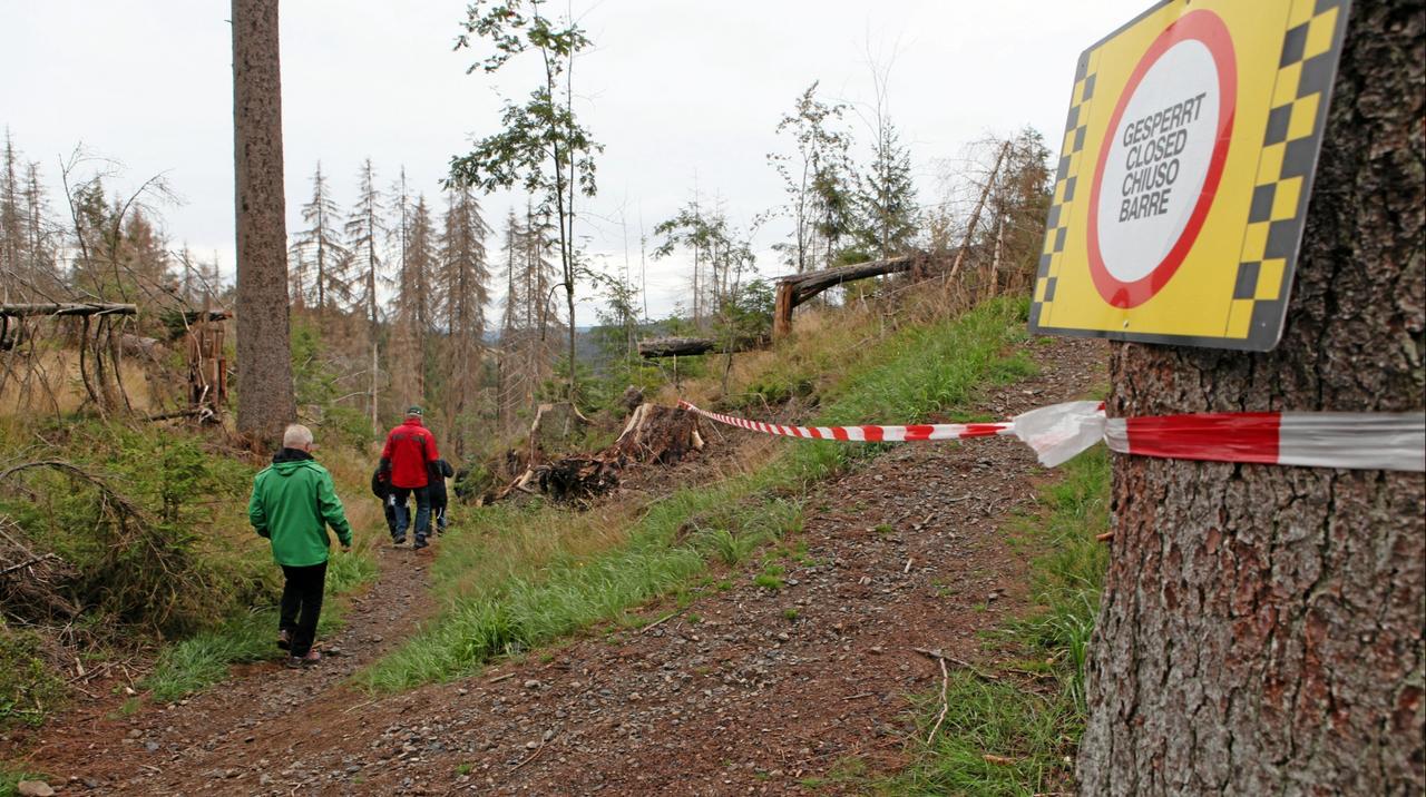 Umleitung für Magdeburger Weg freigegeben