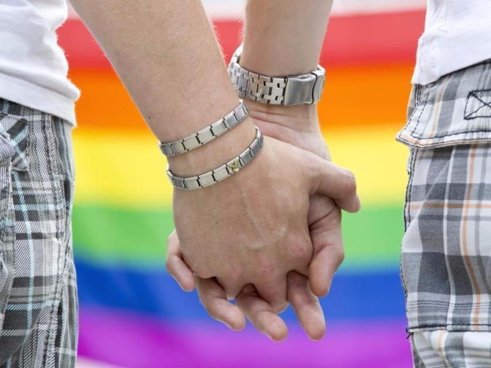 Grüne wollen Abstimmung über Homo-Ehe vor Gericht erzwingen