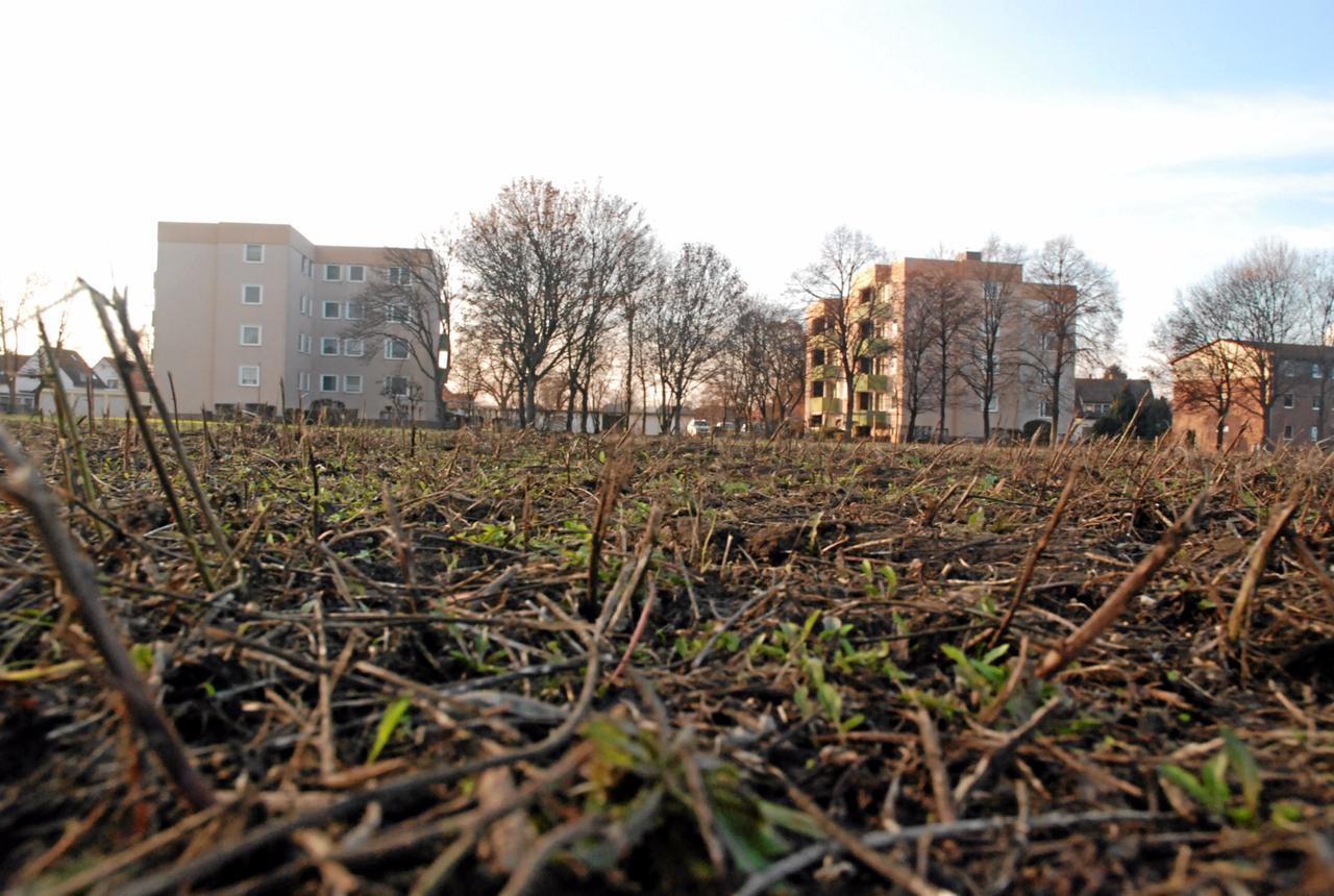 """Das Projekt """"Harzblick"""" nimmt Gestalt an"""