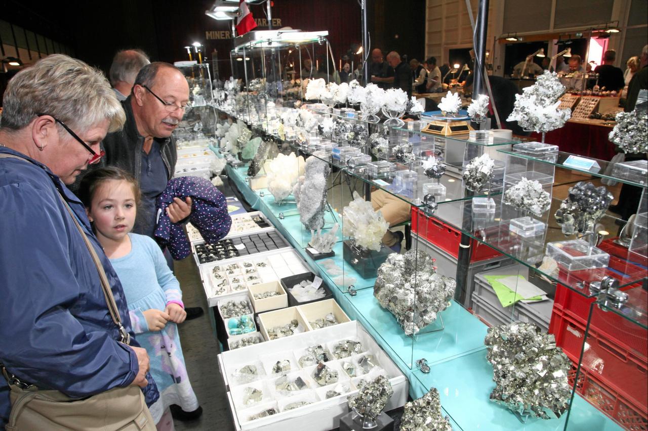 Seltene Stücke bei der Mineralienbörse
