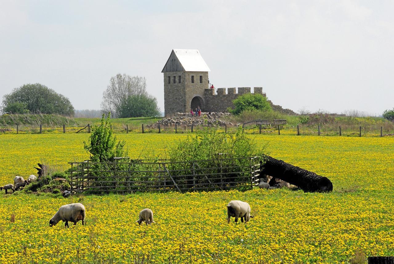 Einblicke in die Geschichte der Werla-Pfalz