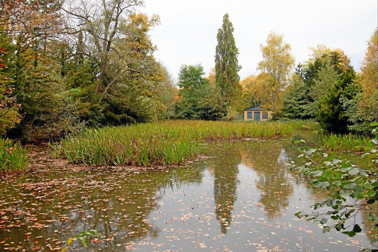 60.000 Euro für den Stadtpark