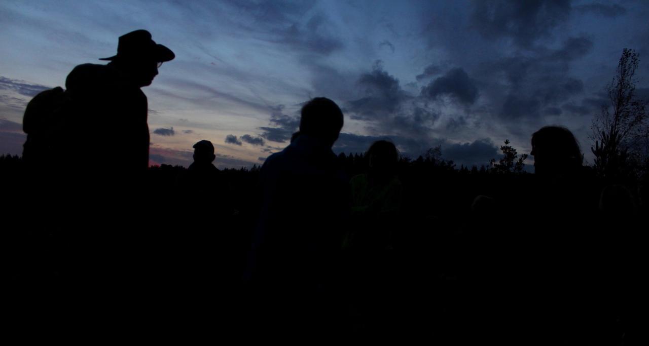 Spannende Wanderung durch die Nacht