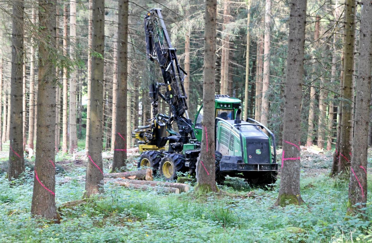 L 601 bei Braunlage wird voll gesperrt