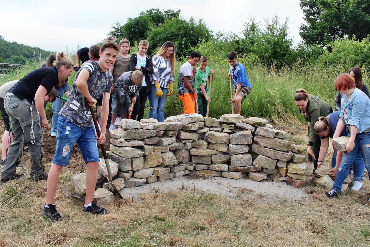 Schüler bauen ein Zuhause für Reptilien