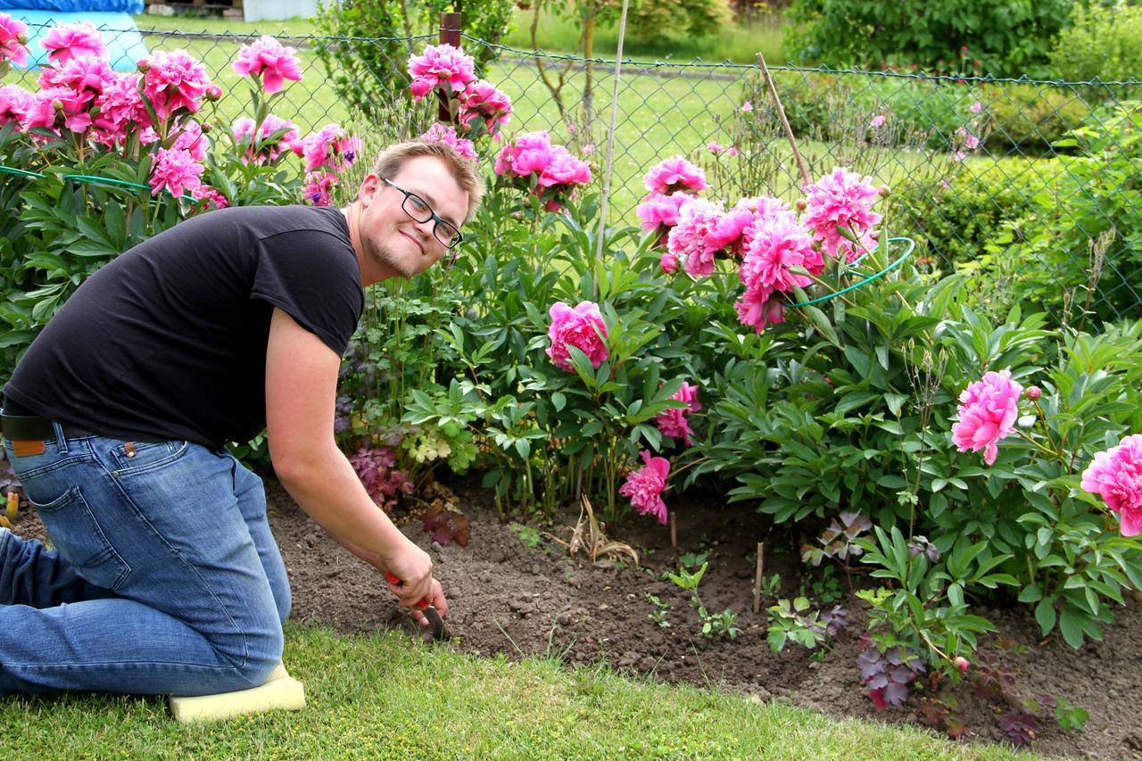 In der Coronakrise sind Kleingärten gefragt