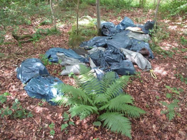 Illegale Müllentsorgung im Wald