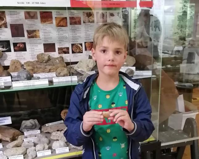 Sechsjähriger übergibt ein Fossil