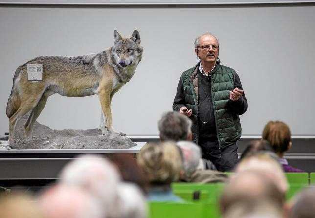 Ehemaliger Förster referiert über den Wolf
