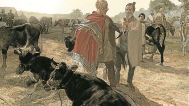 Historikerin referiert über Saxones