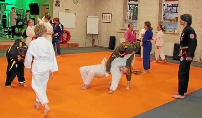 Ju-Jutsu-Academy stellt sein Programm vor