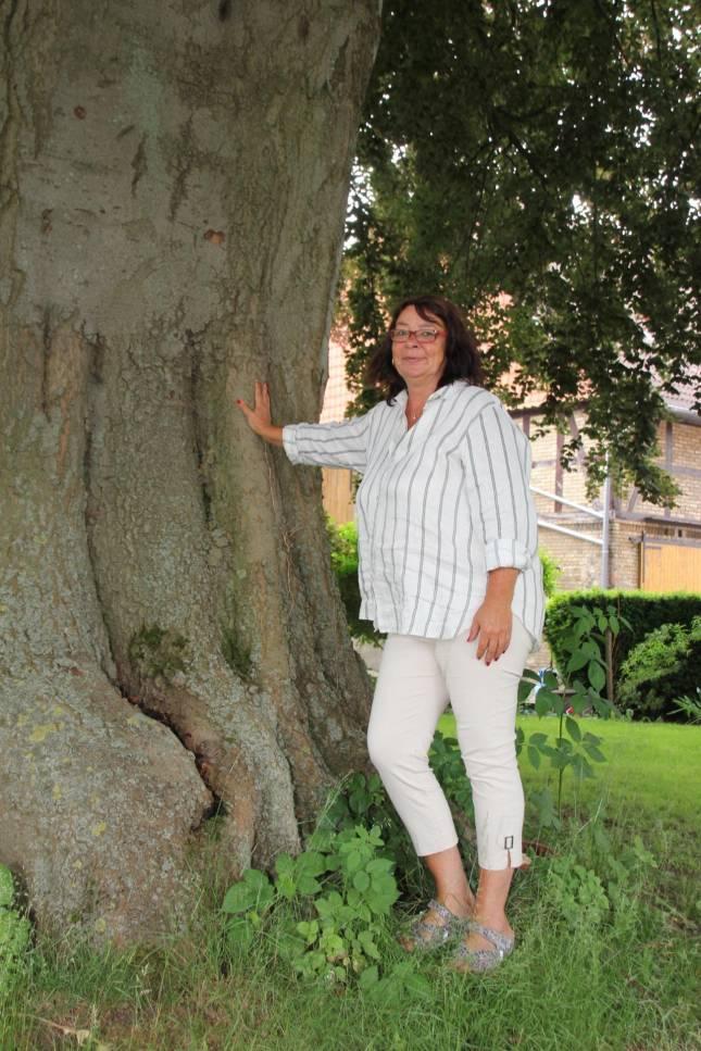 Naturdenkmal: Streit um Verantwortlichkeit
