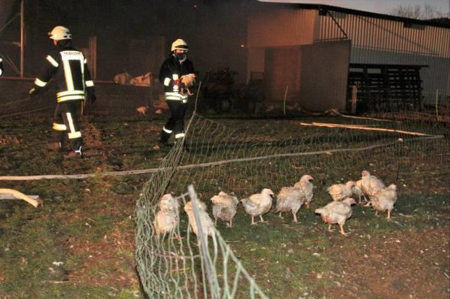 Feuer in der Hühnerfarm bei Lutter gelöscht