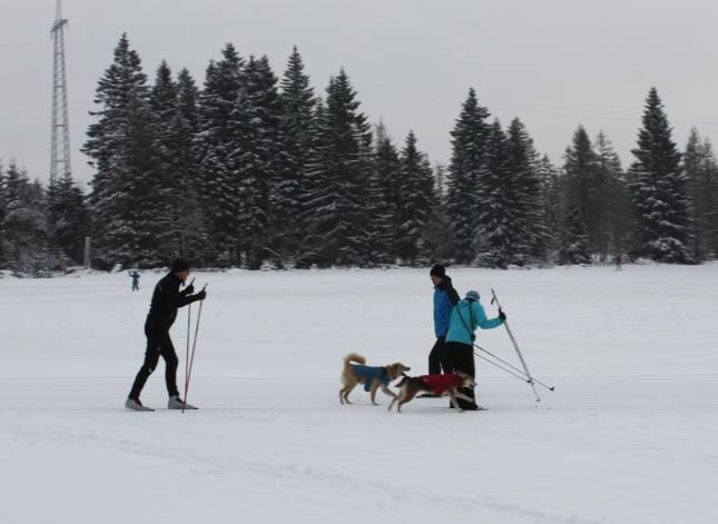 Wintersportler im Harz