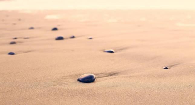 Vortrag: Warum fällt ein Stein zu Boden?