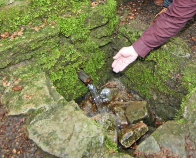 Tauffest am Mausebrunnen