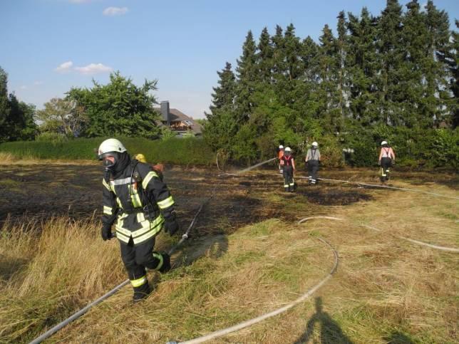 Feldbrand greift auf Wohngrundstücke über
